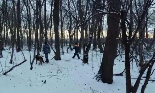 Поиски 10-летнего мальчика в Белореченском районе пока не дали результатов