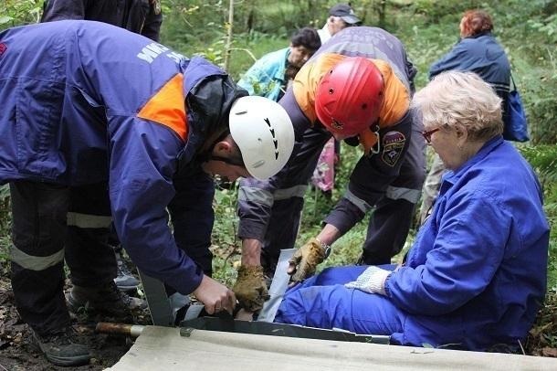 Жительница Сочи пошла за грибами и сломала ногу