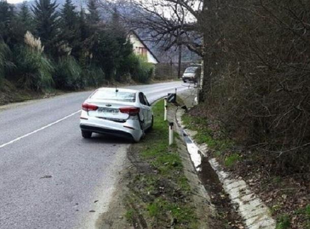 В Краснодарском крае из-за собаки на дороге пострадали дети