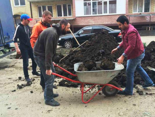 Мэр Краснодара избавил город от свалок на масштабном субботнике