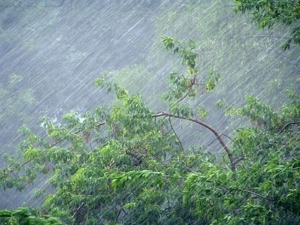 МЧС предупредило о надвигающихся на Краснодарский край сильных дождях