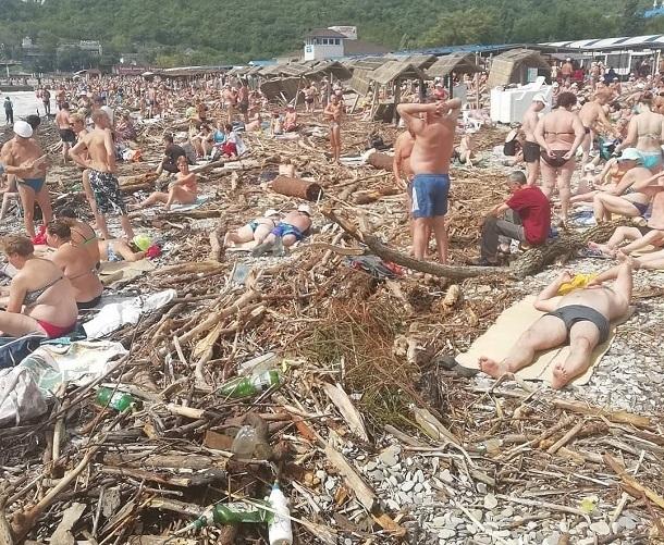 Рай для бобров, - пользователи соцсетей о пляже в Архипо-Осиповке