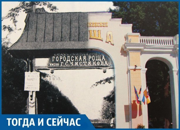 Что сделал Чистяков, чтобы в его честь назвали рощу в Краснодаре