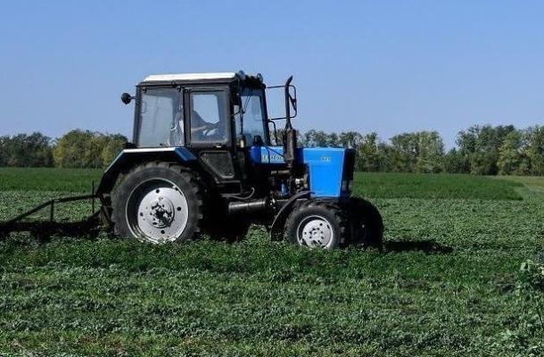 Фермеры Кубани нашли решение, как использовать невостребованные земли