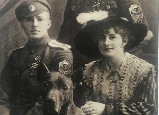 История Краснодара: как в крае появились первые ветлечебницы