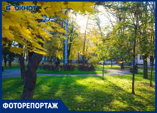 Во что превратился сквер для памятника Ленина в Краснодаре