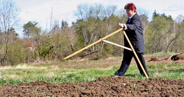 Для многодетных семей в Сочи выделят земельные участки