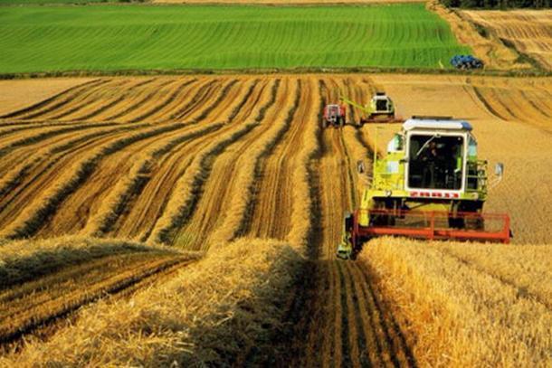 Агропромышленный комплекс Кубани получит более 200 миллионов рублей