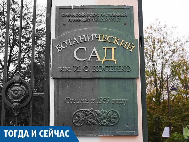 Создания ботанического сада в Краснодаре ждали 43 года