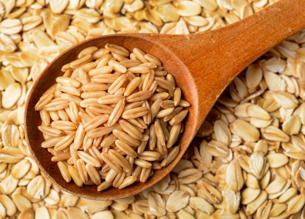 Закрытия первой площадки для отгрузки зерна на Кубани добился Россельхознадзор