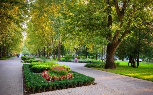 Новая аллея к концу ноября появится в Юбилейном микрорайоне Краснодара