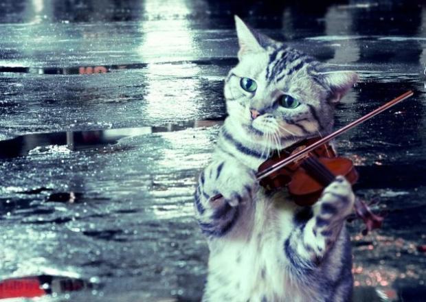 Дожди и град 14 сентября вернутся на Кубань