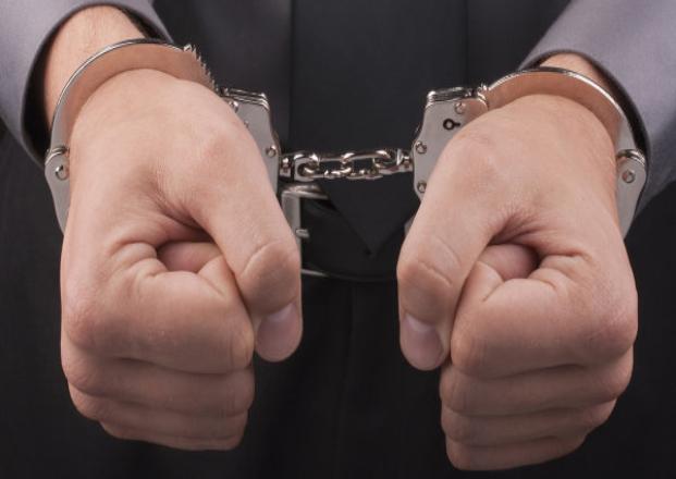 Два спиленных дуба могут стоить кубанцу семи лет лишения свободы