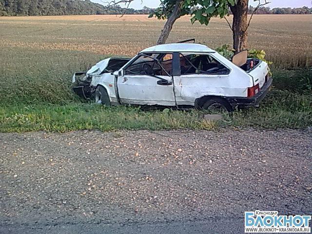 В Кореновском районе в аварии пострадал двухлетний мальчик