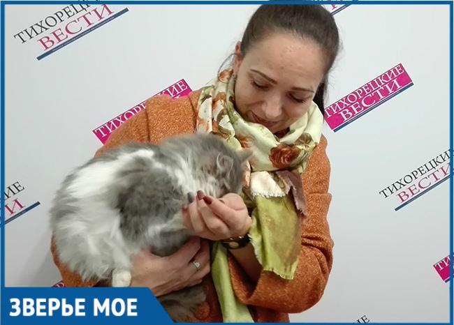 В Тихорецком районе СМИ помогли скитавшейся на улице кошке Марусе воссоединиться с семьей