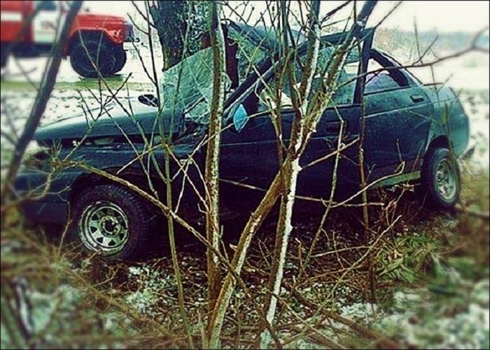 Водитель ВАЗа погиб, врезавшись в дерево под Тимашевском