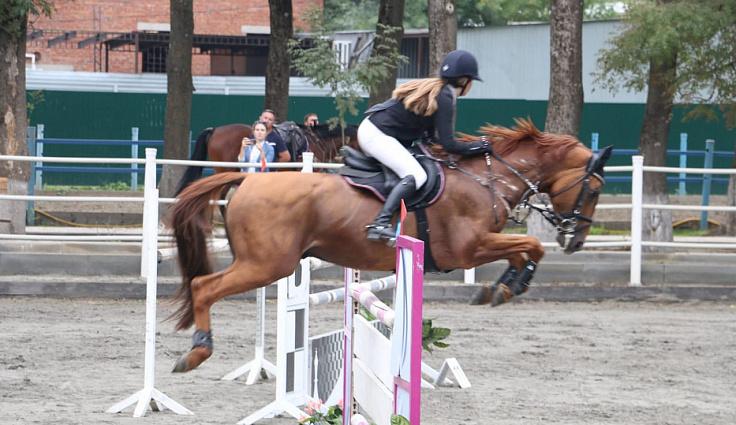 Соревнования по конному спорту прошли в Краснодарском крае
