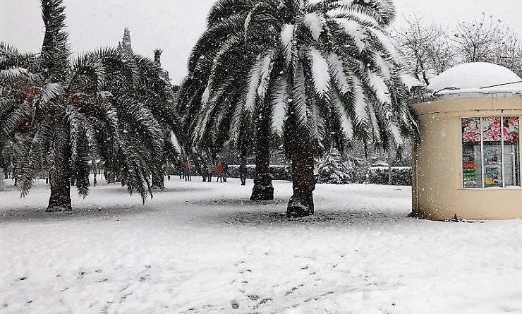 Синоптики пообещали, что Сочи завалит снегом