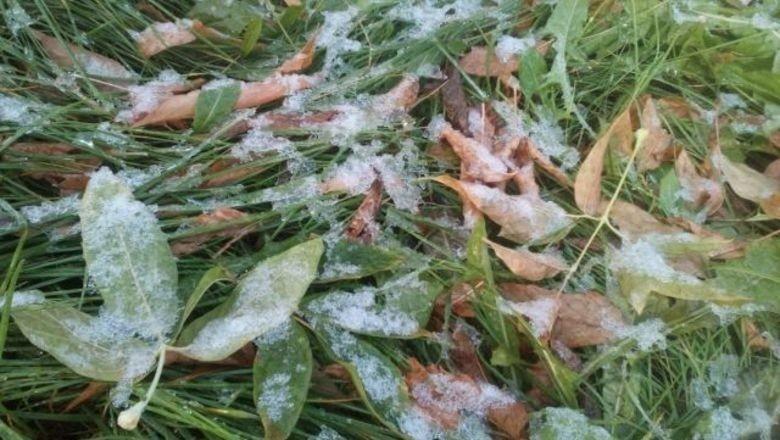 Экстренное предупреждение по заморозкам объявили на Кубани