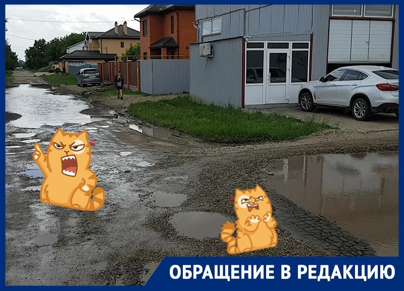 «Кардинально не изменилось»: жители микрорайона Сады Калинина просят Первышова залатать ямы