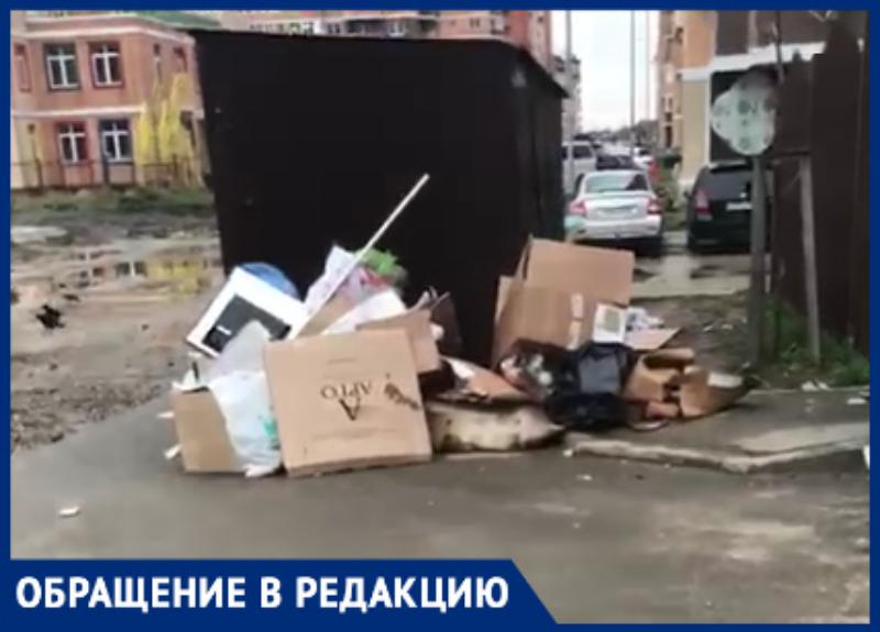 Тротуар рядом с контейнерной площадкой в Краснодаре завалили мусором
