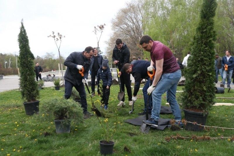 Губернатор и мэр Краснодара посадили 38 деревьев в Чистяковской роще