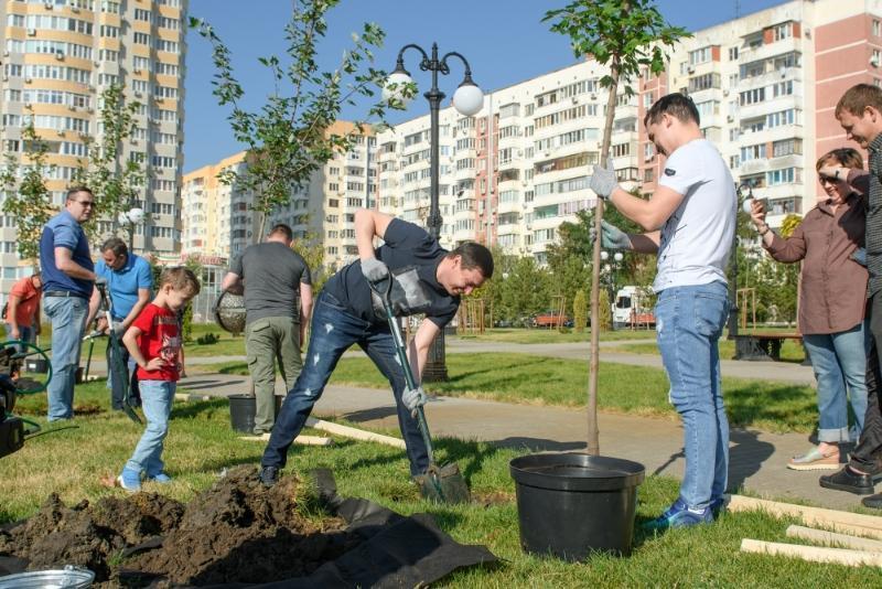 Мэр Краснодара Первышов посадил деревья в Юбилейном микрорайоне