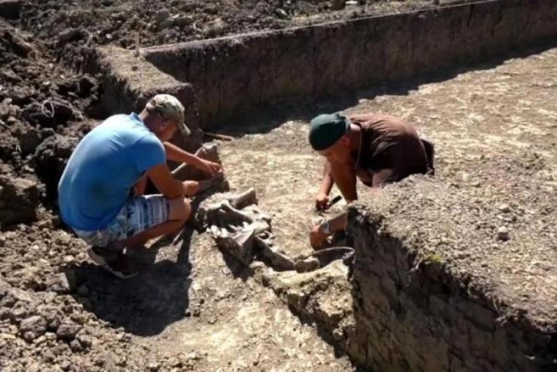 Останки женщины и трехлетнего ребенка нашли на Кубани