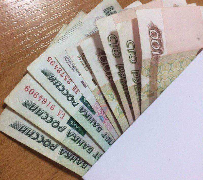 Менеджера по кукурузе с зарплатой 80 тысяч рублей ищут в Краснодаре