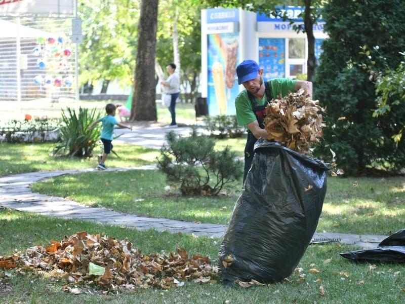 Около 100 тыс человек приняли участие в общегородском субботнике в Краснодаре
