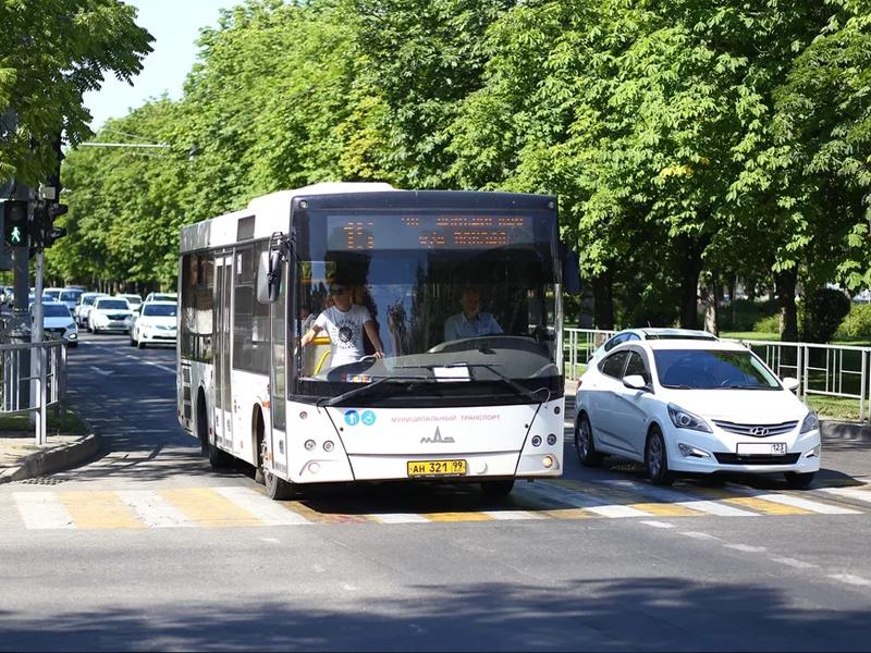«На общественном транспорте в 7 раз дешевле, чем на авто»: краснодарец подсчитал расходы