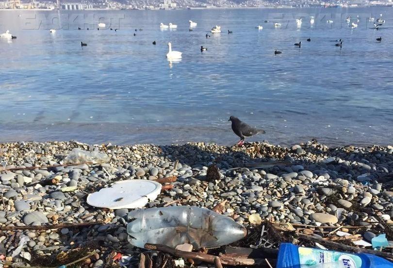 Судебные приставы «изымали мусор» с улиц Краснодарского края