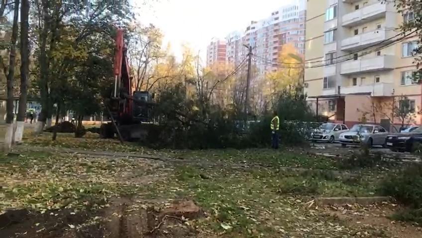 Краснодарцы пожаловались на чересчур большую парковку вместо зеленой зоны