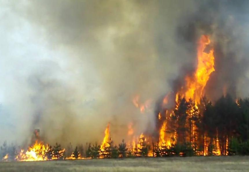МЧС предупредило о возросшей пожароопасности в Краснодарском крае