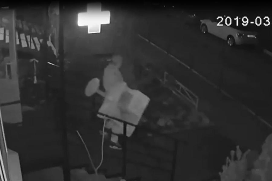 В Краснодаре грабитель унес домик для кота из ветаптеки