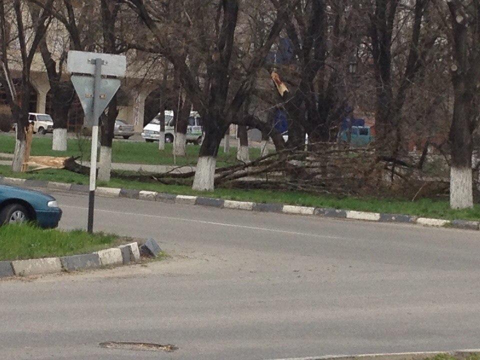 В Армавире сильными порывами ветра сорваны кровли крыш и повалены деревья