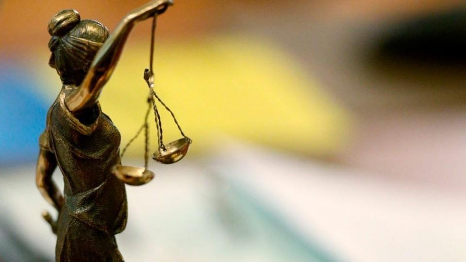 Раздавивший щенков в Горячем Ключе заплатит штраф