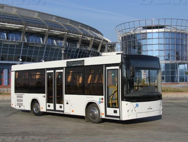 Вместо маршруток в Ростове запустят прохладные автобусы