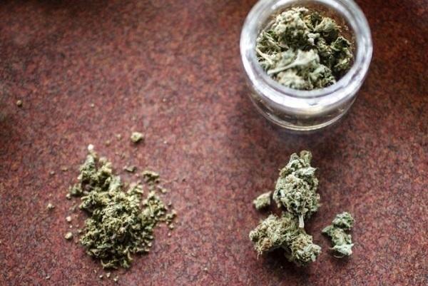 46-летний кубанец выращивал марихуану на приусадебном участке