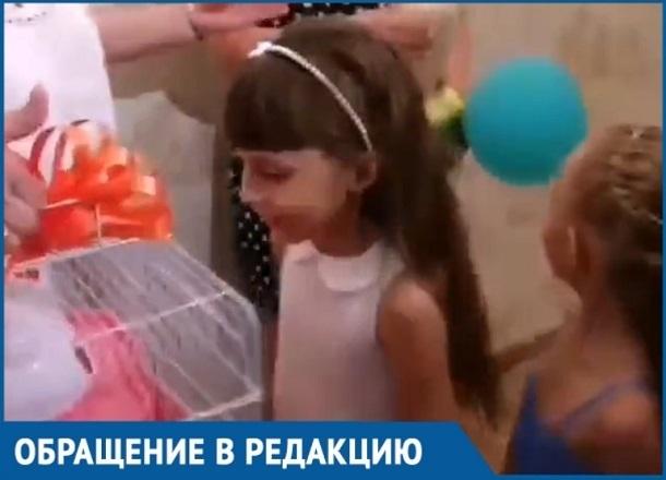 Краснодарская первоклашка обратилась к небу: «Хочу хомяка», и через неделю получила его