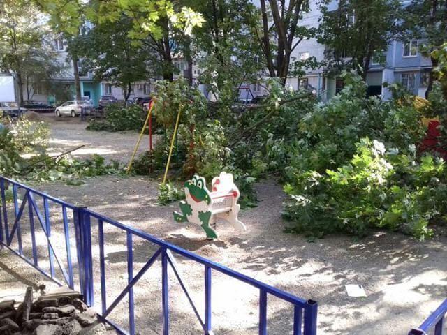 «Ваши дети и деревья нас не волнуют!» - краснодарцы шокированы опасной реконструкцией двора