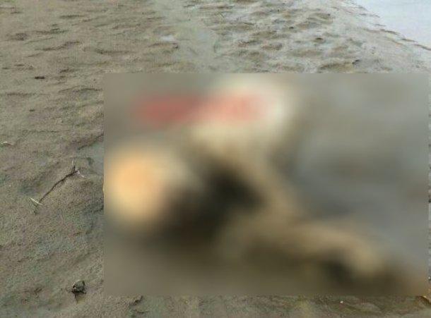 Половину человеческого скелета и его скальп нашли в Курганинском районе