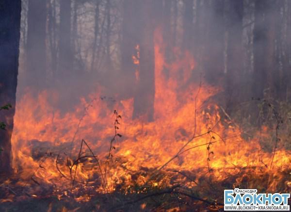 Жителей Краснодарского края предупреждают о высокой степени пожароопасности