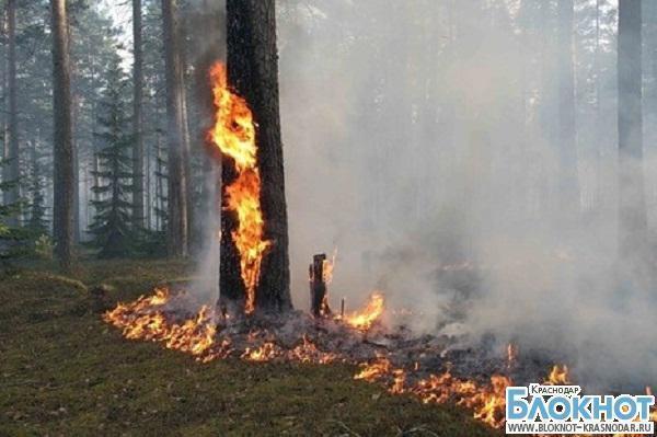 В юго-западной части Краснодарского края объявлена пожароопасность