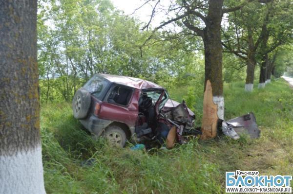 В Крымском районе в ДТП погиб водитель иномарки