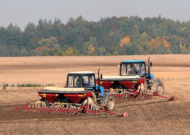 Пострадавшие от града фермеры успешно завершили сев озимых