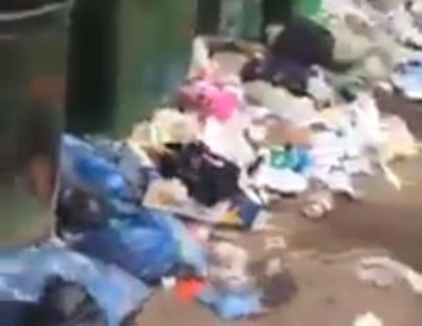 «Здесь толпы крыс шелестят пакетами», - краснодарец на видео пожаловался на санитарное состояние