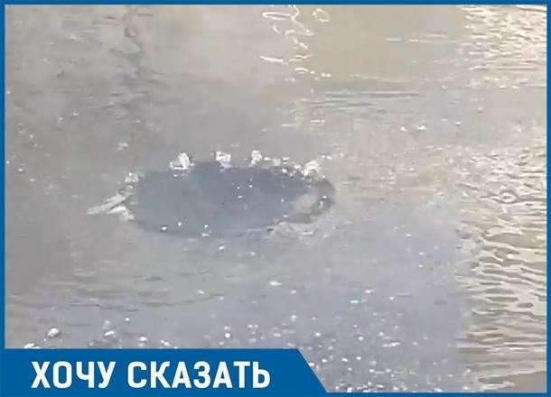 «Канализационная река» периодически появляется в Краснодаре