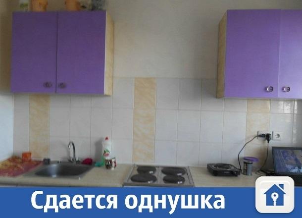 Сдается однокомнатная квартира в Краснодаре