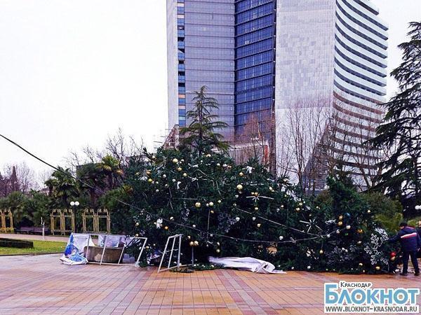 В Сочи из-за шторма рухнула новогодняя елка